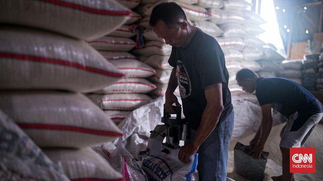 Pengamat menilai holding BUMN Pangan penting demi menghasilkan produk pangan yang bisa bersaing, terjamin kualitas dan harganya.