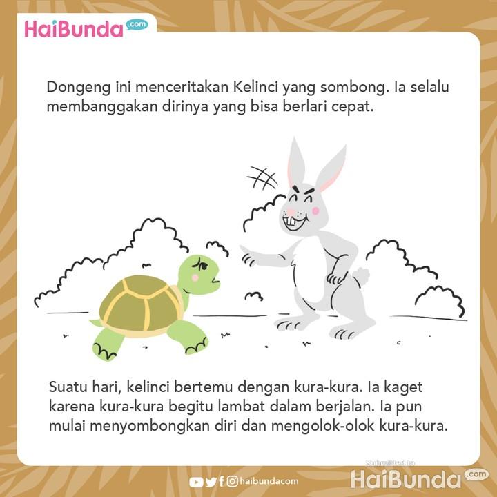 cerita nusantara kelinci dan kura-kura