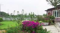<p>Ketika pagi datang, siapapun yang melihat halaman mertua Yannie Kim akan terkesima karena terdapat taman bunga yang luas. Warna bunga pun beragam mulai dari ungu, merah, hingga putih. (Foto: YouTube Yannie Kim)</p>