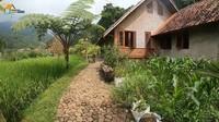 <p>Haji Usman Bimantara memilih pindah ke pelosok Desa Pasanggrahan, Purwakarta, Jawa Barat. Ia ingin menikmati sisa hidup dengan tenang dan damai. (Foto: YouTube Petualangan Alam Desaku)</p>