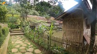 <p>Rumah Haji Usman Bimantara berdiri di area persawahan. Tak ada aspal seperti di kota, Bunda. Rumahnya sangat asri dengan rumput hijau dan bebatuan alam yang dipakai sebagai jalan setapak. (Foto: YouTube Petualangan Alam Desaku)</p>