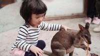 <p>Kecil-kecil, Salma sudah terbiasa menyentuh dan membelai binatang liar. Buktinya di foto ini, Bun. Ia tidak takut lho menyentuh walabi. (Foto: Instagram @atiqahhasiholan)</p>