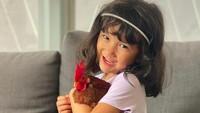 <p>Salma juga memiliki ayam sebagai hewan peliharaan yang bebas berkeliaran di rumahnya. Kata sang bunda, meski Salma menyukai hal-hal berbau princess, pink, tapi tetap cinta pada binatang jenis apapun, lho. (Foto: Instagram @atiqahhasiholan)</p>