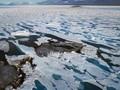 VIDEO: Penampakan Pulau Paling Utara Bumi yang Baru Ditemukan