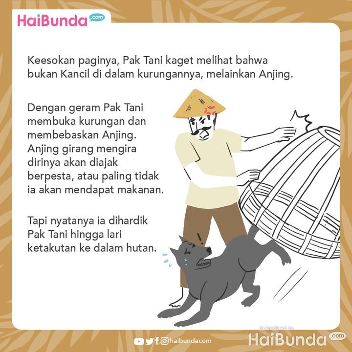 Cerita Nusantara Kancil dan Anjing