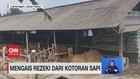 VIDEO: Mengais Rezeki Dari Kotoran Sapi Dan Naga