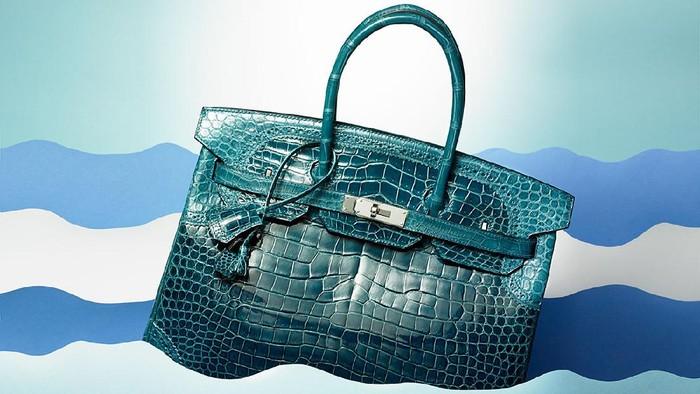 Rahasia di Balik Kulit Eksotis dari Tas Hermes! Serta Benarkah Tas Kulit Buaya Tahan Air? Ini Jawabannya