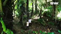 <p>Untuk mencapai rumah Frendi, ada berbagai rintangan yang harus dilewati, Bunda. Mulai dari hutan, jalan yang mendaki, hingga sungai. (Foto: Youtube Boy William)</p>