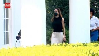 VIDEO: Angelina Jolie Datangi Gedung Putih