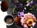 FOTO: Geliat Praktik Ubah Jenazah Menjadi Kompos di AS