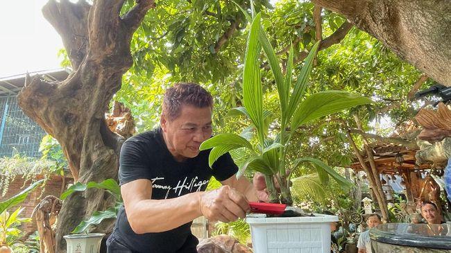 Seorang pengusaha asal Semarang Ikhwan Ubaidilah membuat kreasi tanaman bonsai kelapa yang bernilai ratusan juta rupiah. Bagaimana ceritanya?