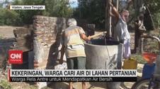 VIDEO: Kekeringan, Warga Cari Air di Lahan Pertanian