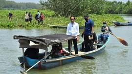 Jokowi Terbang ke Kalimantan Utara untuk Tanam Mangrove