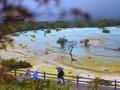 FOTO: Danau 'Dunia Peri' di Huanglong