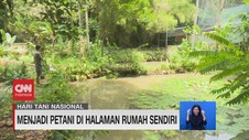 VIDEO: Menjadi Petani di Halaman Rumah Sendiri