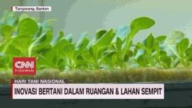 VIDEO: Inovasi Bertani di Ruang Sempit