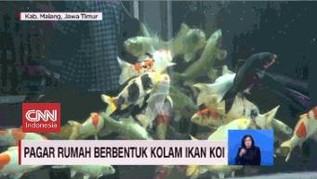 VIDEO: Pagar Rumah Berbentuk Kolam Ikan Koi