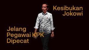 INFOGRAFIS: Kesibukan Jokowi Jelang Pegawai KPK Dipecat