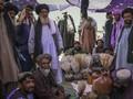 Opium, Bisakah Taliban Hidup Tanpa Ladang Uang yang Harum?
