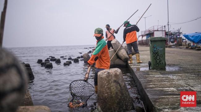 DKI Akui Terdapat Kandungan Paracetamol di Teluk Jakarta