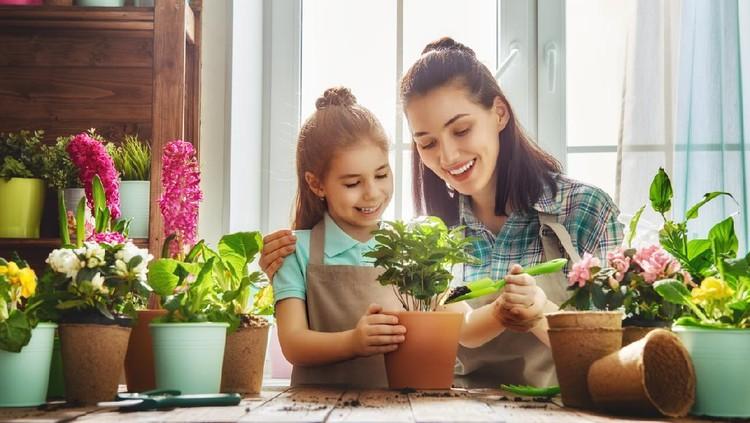 Ilustrasi ibu dan anak menanam tanaman hias