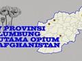 INFOGRAFIS: 7 Provinsi Lumbung Utama Opium Afghanistan