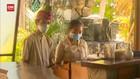 VIDEO: Turis Asing Masuk Bali, Karyawan Hotel Kerja Kembali