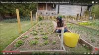 <p>Enggak hanya beternak ayam, Ima juga disibukkan dengan kebun mini miliknya, Bunda. Di sana, ia&nbsp;menanam sayuran hingga beberapa jenis bunga yang membuat rumahnya tampak begitu asri sekaligus indah dipandang. (Foto: YouTube: Ima Vandam Channel)</p>