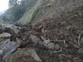 Evakuasi Jalan Kintamani usai Gempa Bali Terhambat Hujan