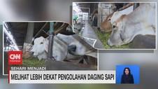 VIDEO: Sehari Menjadi Produsen Pengolah Daging Sapi