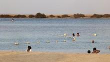 5 Fakta soal Pantai Bebas Bikini di Arab Saudi