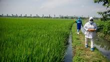 FOTO: Ojek Makanan Balita (Omaba) untuk Cegah Stunting