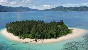 Pulau Kecil di Papua Barat yang Dihuni Ribuan Kelelawar