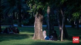 FOTO: Menikmati Sore di Lapangan Banteng