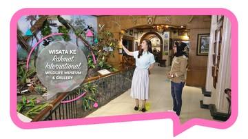 Wisata ke Rahmat International Wildlife Museum & Gallery